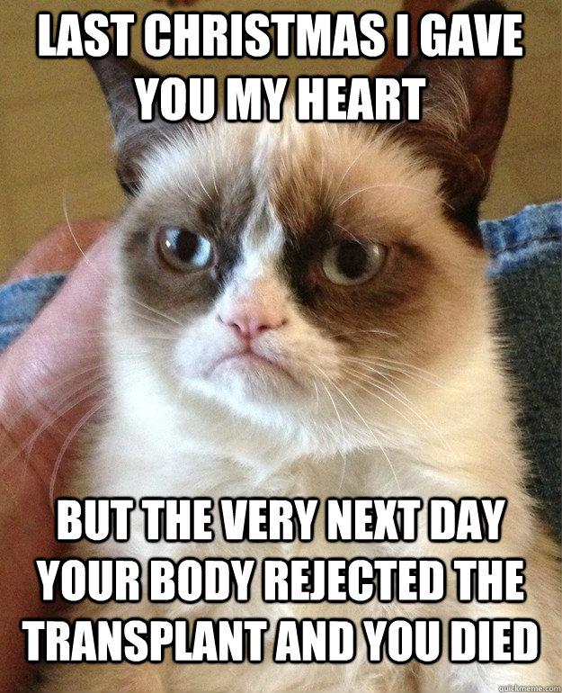 Last Christmas I Gave You My Heart Cat Meme - Cat Planet | Cat Planet
