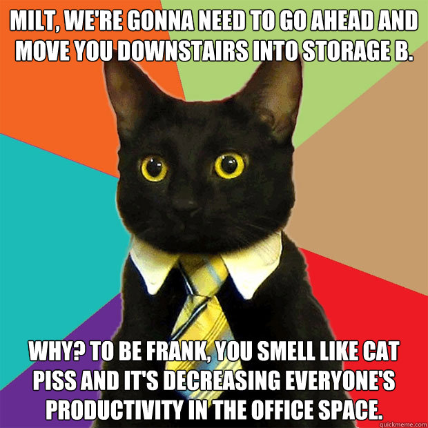 Milt, We're Gonna Need To Go Ahead Cat Meme