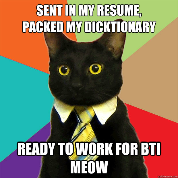 Sent In My Resume Cat Meme Cat Planet Cat Planet