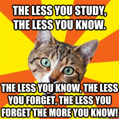 The less you study the less you study cat meme cat planet cat planet
