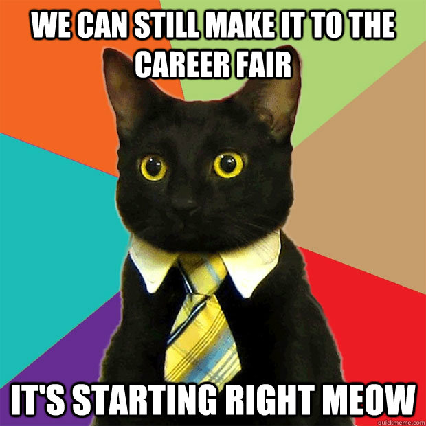 We can still make it to the career we can still make it to the career cat meme cat planet cat planet