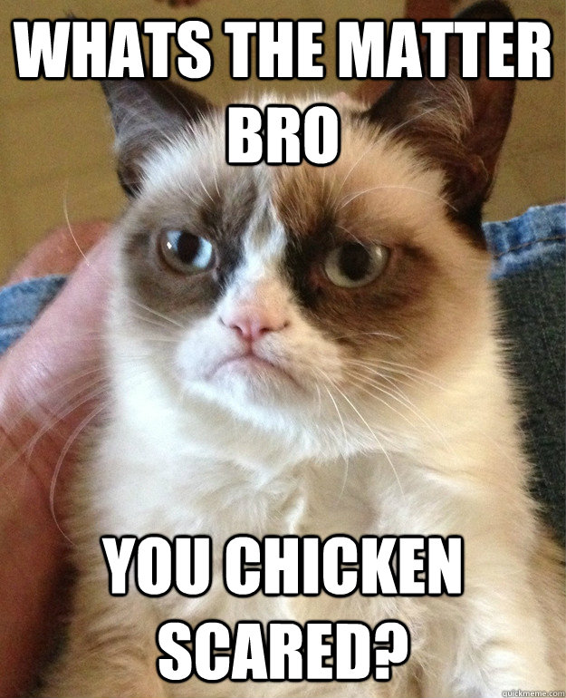 Whats the matter bro you chicken scared whats the matter bro you chicken scared cat meme cat planet