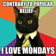 Contrary To Popular Belief– Cat Meme