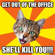 Get Out Of The Office She'll Kill You!!! Cat Meme
