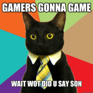 Gamers Gonna Game Wait Cat Meme