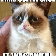 I Had Coffee Once It Was Awful Cat Meme
