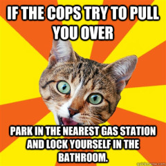 If The Cops Try To Pull Cat Meme