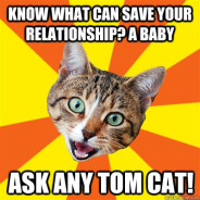 Know What Can Save Your Relationship? Cat Meme