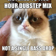 Listened To Five Hour Dubstep Cat Meme