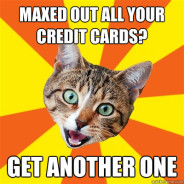Maxed Out All Your Credit Cards? Cat Meme