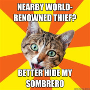 Nearby World-Renowned Thief? Cat Meme