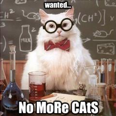 Nobelium, Molybdenum, Rhenium Cat Meme