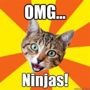 OMG… Ninjas! Cat Meme