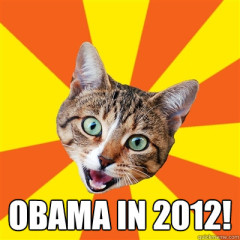 Obama In 2012! Cat Meme