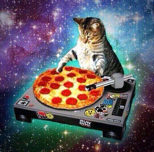 Pizza space cat pizza space cat meme cat planet cat planet,Pizza Cat Meme