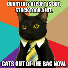 Quarterly Report Is Out Cat Meme