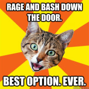 Rage And Bash Down The Door Cat Meme