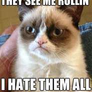 They See Me Rollin' Cat Meme