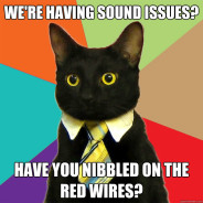 We're Having Sound Issues? Cat Meme