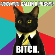 Who You Callin A Pussy? Cat Meme