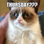Why Is It Only Thursday??? Cat Meme