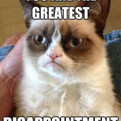 You Are The Greatest Disappointment Cat Meme