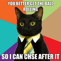 You Better Get The Ball Rolling Cat Meme