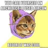 You Call Yourself An Architect? Cat Meme