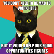 You Don't Need To Be Mad To Work Cat Meme