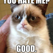 You Hate Me? Cat Meme