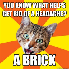 You Know What Helps Get Cat Meme