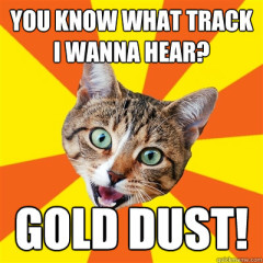 You Know What Track Cat Meme