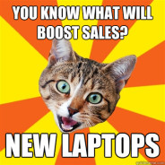 You Know What Will Boost Sales? Cat Meme