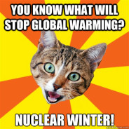 You Know What Will Stop Global Warming? Cat Meme