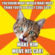 You Know What Would Make Matt Cat Meme