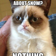 You Know What's Great About Snow? Cat Meme