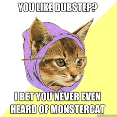 You Like Dubstep? Cat Meme