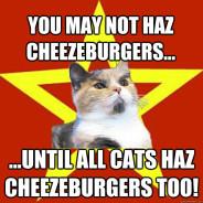 You May Not Haz Cheezeburgers… Cat Meme