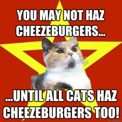 You May Not Haz Cheezeburgers… Cat Meme