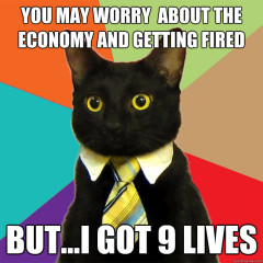 You May Worry About The Economy Cat Meme
