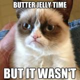 You Said It Was Peanut Butter Cat Meme