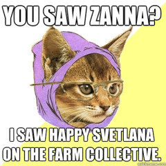 You Saw Zanna? Cat Meme