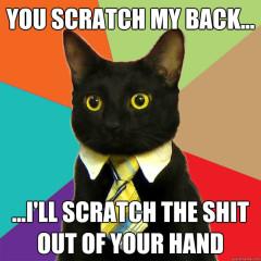 You Scratch My Back… Cat Meme