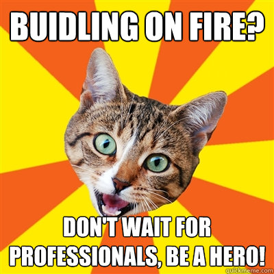 Buidling On Fire? Cat Meme - Cat Planet | Cat Planet